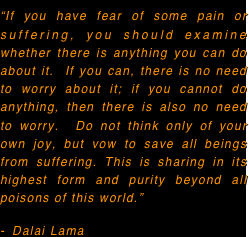 """If you have fear of some pain or suffering, you should examine whether there is anything you can do about it.  If you can, there is no need to worry about it; if you cannot do anything, then there is also no need to worry.  Do not think only of your own joy, but vow to save all beings from suffering. This is sharing in its highest form and purity beyond all poisons of this world."" 